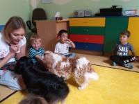 Zajęcia edukacyjne z psem_3