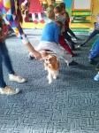 Zajęcia edukacyjne z psem_16